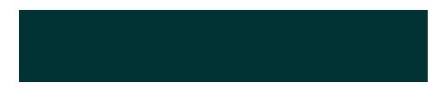 samson-kamnik-logo